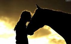 Life is not complete without a horse your life to all those cowgirls be yourself and love your horse show off your horse