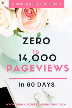 How I went zero to 14,000 pageviews in just 60 days on a brand new blog! My full strategy revealed.