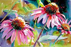 Ken Hosmer - watercolor coneflowers