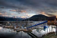 Haines, Alaska (where I saw my first moose)