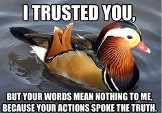 A Drake duck reciting Drake lyrics. Sweet.