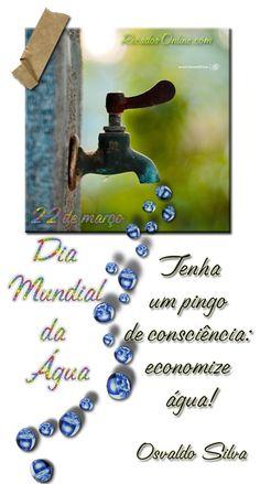 Dia Mundial da Água Imagem 10