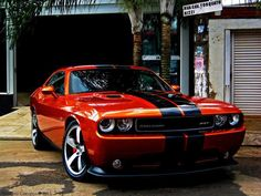 Dodge Challenger !!!                                                                                                                                                                                 Plus