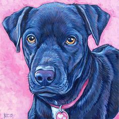 10 x 10 Custom Pet Portrait Painting in by bethanysalisbury