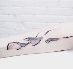 Evgeny Mel stingray tattoo