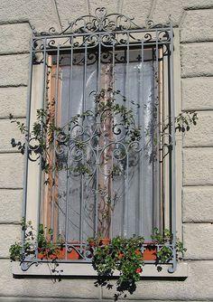 ~Florence window