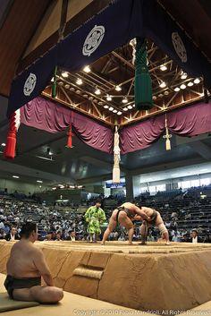Sumo 相撲