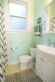Mint walls, grey accent, tray on toilet.. love the colors