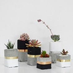 """713 curtidas, 6 comentários - DIY HOME - Decor e DIY (@diyhomebr) no Instagram: """"Vasinhos de cimento e suculentas  lá do Pinterest. #concreto #suculentas #vasos #diyhome #diyhomebr"""""""