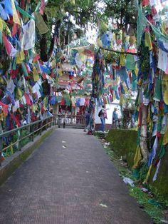 #magiaswiat #darjeeling #podróż #wakacje #zwiedzanie # indie #blog #świątynia #mahakala # Indie, Darjeeling, Times Square, Blog, Travel, Viajes, Darjeeling Tea, Blogging, Destinations