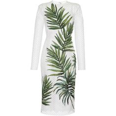 Dolce & Gabbana Palm Leaf Mesh Dress (60,960 CNY) ❤ liked on Polyvore featuring dresses, white form fitting dress, white mesh dress, form fitting cocktail dresses, white cocktail dresses and palm tree print dress