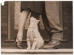 Love this shot. Kissing goodbye, woman on her tip toes, kitty looking on... ~ State Library of new South Wales collection on Flickr