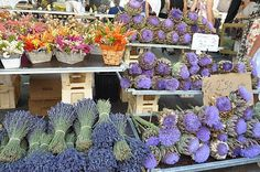 lavander bunches and antichoke flowers