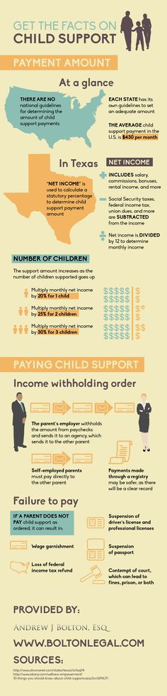 Get the Facts on Child Support Infographic