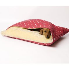 Cama com cobertor acoplado para pets. #gato #cachorro #pet