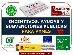 Repertorio de Incentivos, Ayudas y Subvenciones Públicas para PYMES.