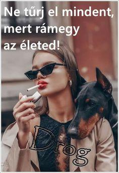 Sunglasses Women, Van, Happy, Style, Fashion, Swag, Moda, Fashion Styles, Ser Feliz