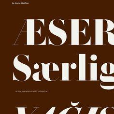 Le Jeune typeface, originally designed by Christian Schwartz and Paul Barnes for Vanity Fair. Via Commercial Type