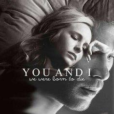 Klaus x Caroline Forbes - Joseph Morgan x Candice Accola ~ Klaroline