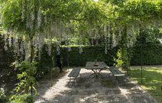 загородный дом скамейка столик деревья