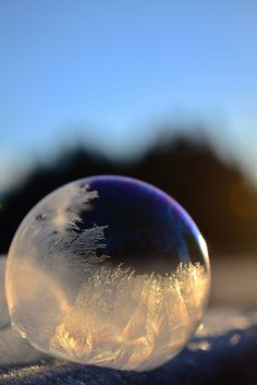 Frozen Bubbles in frigid temperatures by photographer Angela Kelly.