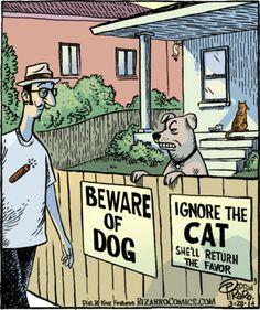 Bizarro -Dog and Cat