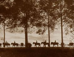 A view, in silhouette, of Australian artillery limbers loaded with ammunition proceeding along the Ypres Road, 25 September detail World War One, First World, Vintage Photographs, Vintage Photos, Sunset Images, Sunset Pictures, Flanders Field, Winter Sunset, Lest We Forget