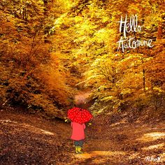 "Crayon d'Humeur - ""Hello Automne"" Jolie Images, Fall Inspiration, Bonheur Simple, Diy Wedding Hair, Winter Coffee, Coffee Instagram, Red Umbrella, Draw On Photos, Art Bag"