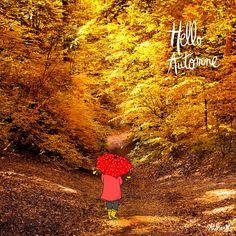 """Crayon d'Humeur - """"Hello Automne"""""""