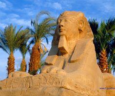 Teseros de Egipto - Viaje a Egipto: Cairo, Crucero por el Nilo y Sharm-el-Sheikh