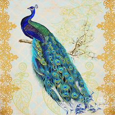 I uploaded new artwork to plout-gallery.artistwebsites.com! - 'Beautiful Peacock-B' - http://plout-gallery.artistwebsites.com/featured/beautiful-peacock-b-jean-plout.html via @fineartamerica
