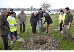 El Ayuntamiento inicia la plantación de árboles en la Laguna de Torrox | Mira Jerez