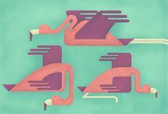Las medias de los flamencos by Andrea Devia Nuño, via Behance