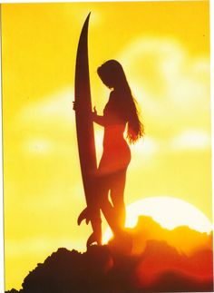 surf in the sunset