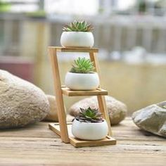 3 White Ceramic Planter Set With 3-Tier Shelf Stand