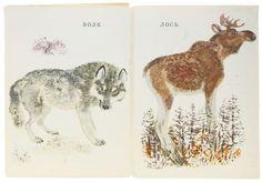 childrens book wolf