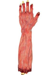 Skinned Severed Arm