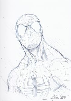 Spider-Man _ by Alvin Lee