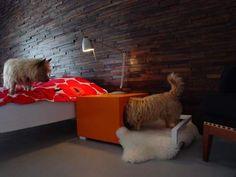 Hunde Hus Dog House and Bedside Table - Dog Milk