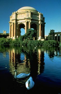 Visit the Palace of Fine Arts in San Francisco otherwise known as the Exploratorium. Had a cool photo shoot here once!