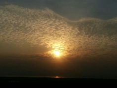 Yet another beautiful sunset shot from the Palm Beach Road area of New Bombay (Pic taken by Deepali Ghanekar)