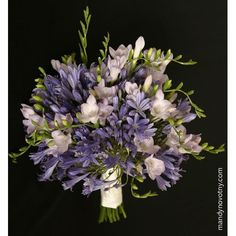 Blue agapanathus and white freesia in hand tied bridal bouquet