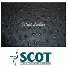 Here are 10 top care tips for your ostrichleather products: http://on.fb.me/1a5nAy7 #caretips #ostrichleather