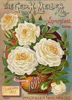 Vintage Flowers ~ Retrò Pop-art style | Tutt'Art@ | Pittura • Scultura • Poesia • Musica