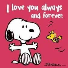 Snoopy and Woodstock. Source by Meu Amigo Charlie Brown, Charlie Brown Y Snoopy, Snoopy Images, Snoopy Pictures, Funny Pictures, Snoopy Christmas, Charlie Brown Christmas, Christmas Carol, Snoopy Halloween
