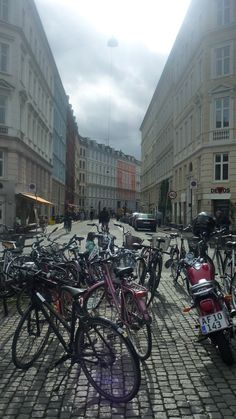 Copenhagen bikes everywhere. We were told by several people there to watch out for a passing bike as they were more dangerous to us than motorized vehicles.