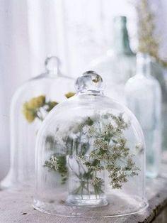 シンプルな野草もグラスドームでオシャレな雰囲気。 暮らしの中に花を採り入れる事で季節の変化にもより敏感になれますね。