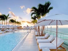 1 Hotel South Beach Miami Beach, Florida outdoor sky tree leisure chair Beach swimming pool vacation Resort caribbean Sea Ocean arecales marina dock walkway shore lined accessory furniture set sandy several