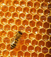 Hexagons In The Real World Pinterest • T...