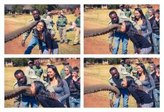 Elephant touch and feed experience at Askari Game Lodge & Spa in Magaliesberg.